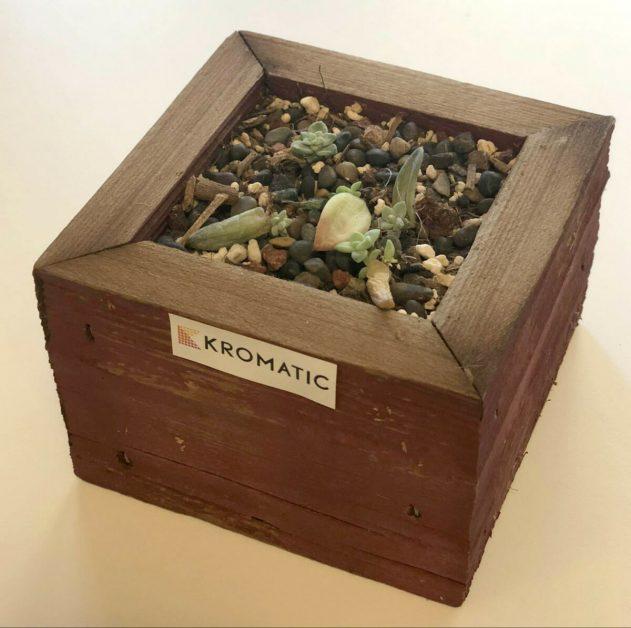 new Kromatic plant