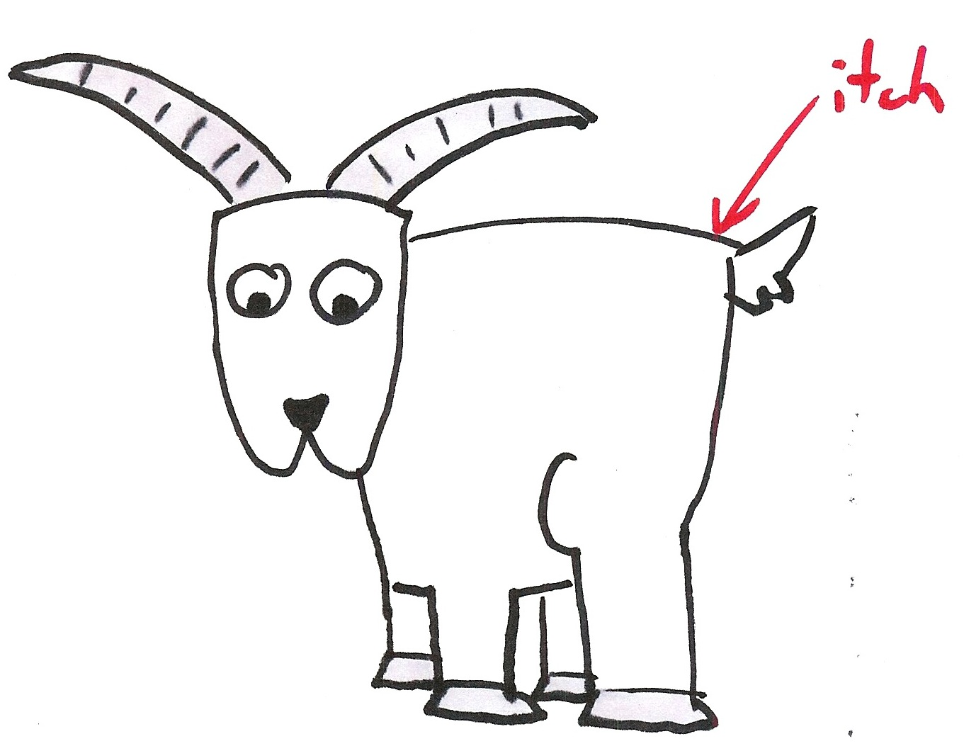 Kent Beck's Itchy Goat metaphor for Lean Startup: build measure learn